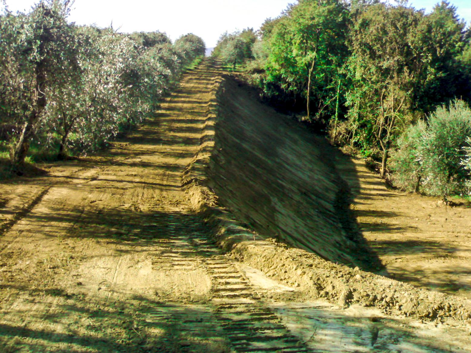 Consolidamento frane e stabilizzazione di versanti