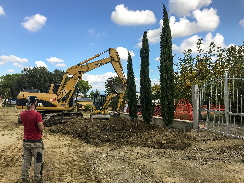Trapianto alberi ad alto fusto ed olivi