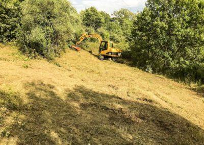 Deforestazioni (4)