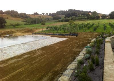 Realizzazione e manutenzione giardini (12)