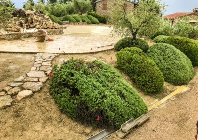 Realizzazione e manutenzione giardini (7)