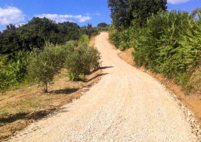 Realizzazione e manutenzione strade (4)